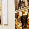「岩合光昭の世界ネコ歩き写真展」萬鉄五郎記念美術館で開催