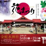 岩沼市 金蛇水神社「花まつり」2019 牡丹と藤の共演 本年度に限り入園料無料