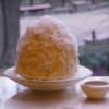 仙台・ふっわぁふわのかき氷「梵くら」粉雪の口どけかき氷 ご紹介